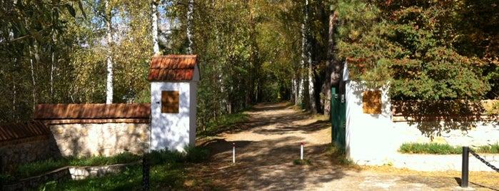 Музей-заповедник В. Д. Поленова is one of Andrey: сохраненные места.