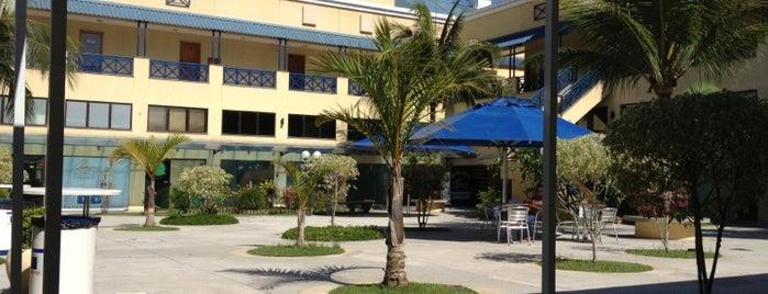 Colégio Miguel Couto Recreio is one of Tempat yang Disukai Areta.