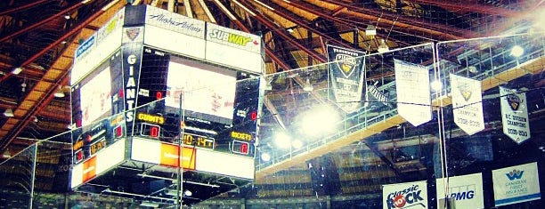 Pacific Coliseum is one of sports arenas and stadiums.