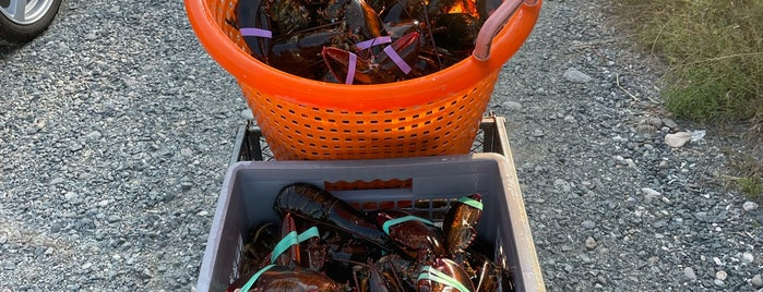 C-Ray Lobster is one of BEST OF: Maine.