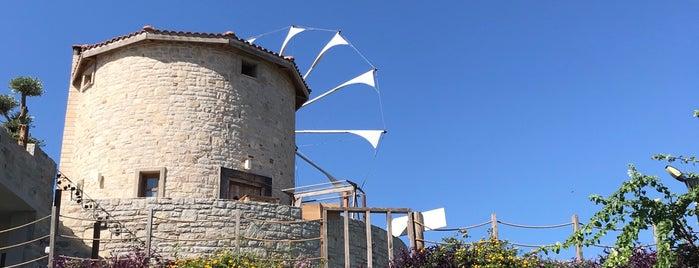 Datça Vineyard & Winery is one of Tempat yang Disukai Aylin.