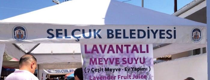 Belevi Köy Pazarı is one of Lugares favoritos de Aylin.