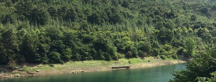 Yuvacık Barajı is one of Aylin'in Beğendiği Mekanlar.