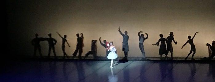 Национальный академический большой театр оперы и балета Республики Беларусь is one of Aylin'in Beğendiği Mekanlar.