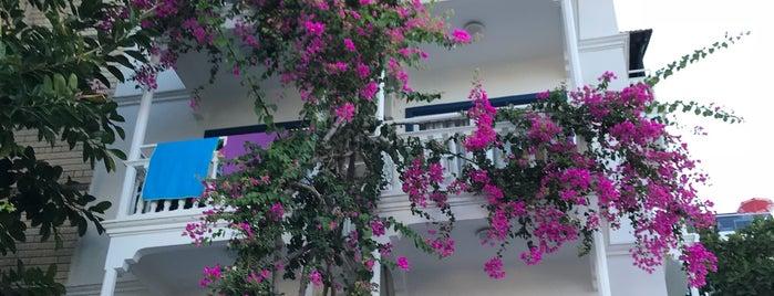 Koza Otel is one of Tempat yang Disukai Aylin.