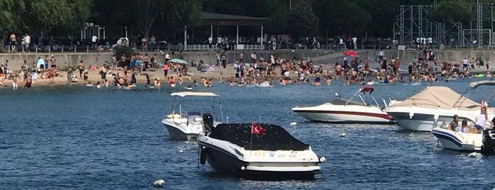 Özeller Marina is one of Posti che sono piaciuti a Aylin.