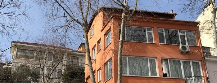 Yeniköy Kitapçısı is one of Ceren 님이 저장한 장소.