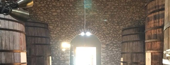 Samos Wine Museum is one of Posti che sono piaciuti a Aylin.