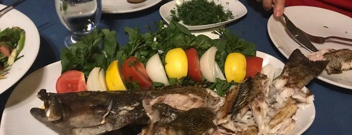 Emek Balık  Restaurant is one of สถานที่ที่ Aylin ถูกใจ.