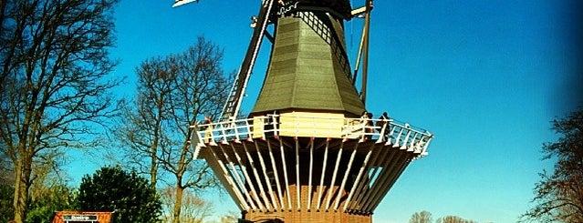 Keukenhof is one of Netherlands.