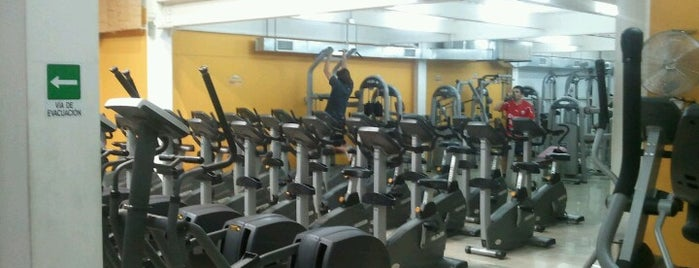 Pacific Fitness is one of Estadios y canchas - Chile.
