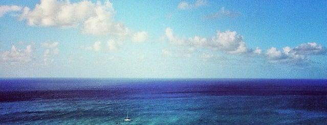 Pelican Cay is one of Posti che sono piaciuti a Sveta🍭.