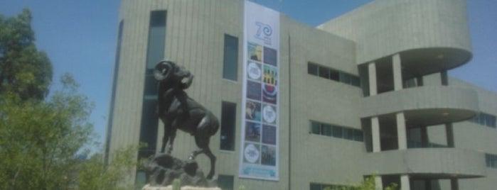 Tecnológico de Monterrey Campus Zacatecas is one of Alexanderさんのお気に入りスポット.