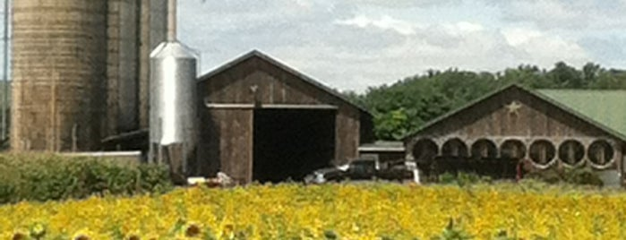 Broom's Bloom Dairy is one of Maryland Bucket.