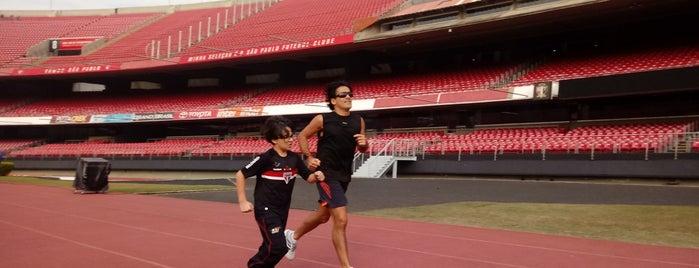 Pista de Atletismo is one of Locais curtidos por Emerson.