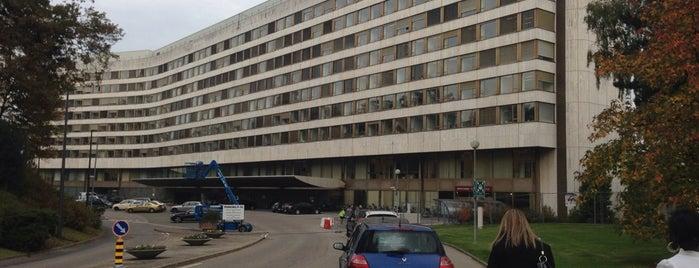 United Nations Development Programme (UNDP) is one of Geneva.