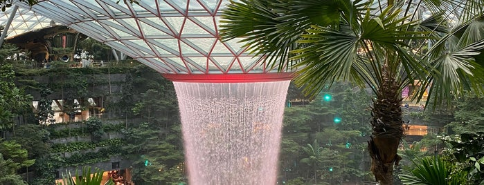 Jewel Changi Airport is one of Lieux qui ont plu à Kenneth.