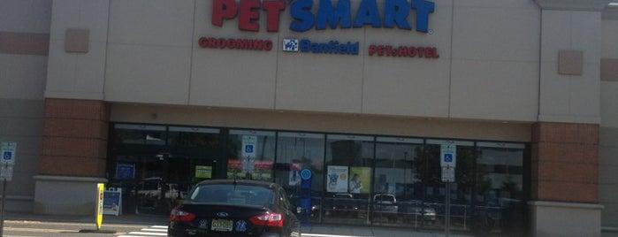 PetSmart is one of Gamalier 님이 좋아한 장소.