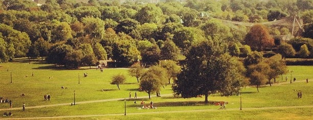 Primrose Hill is one of London.