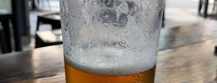 Buckley's Craft Beer Bar is one of Sydney.