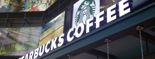 Starbucks is one of Edward : понравившиеся места.