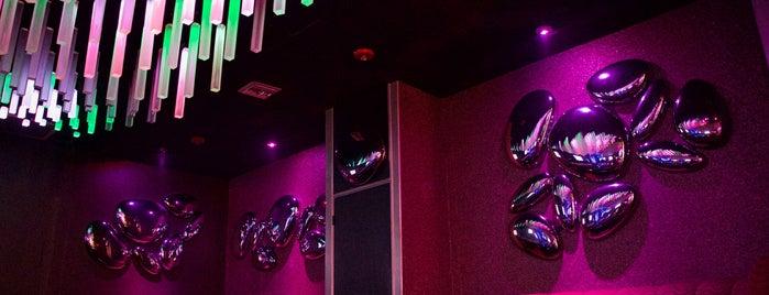 Playmates Club is one of Bienvenidos a Miami.
