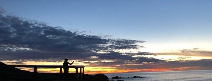 Garrapata Beach is one of Cali trip.