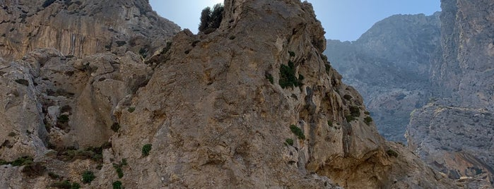 Patsos Gorge is one of Crete.