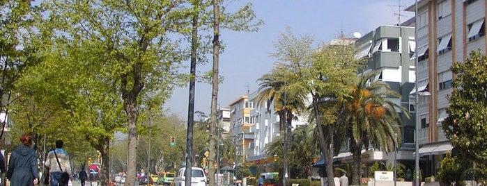 Bağdat Caddesi is one of ....