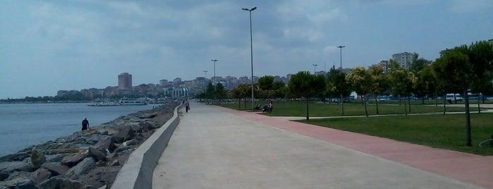 Kartal is one of İstanbul'un İlçeleri.