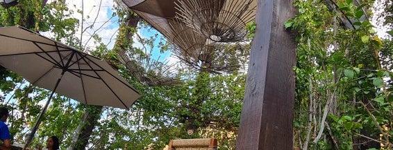 Jazamango Restaurant is one of Todos Santos.