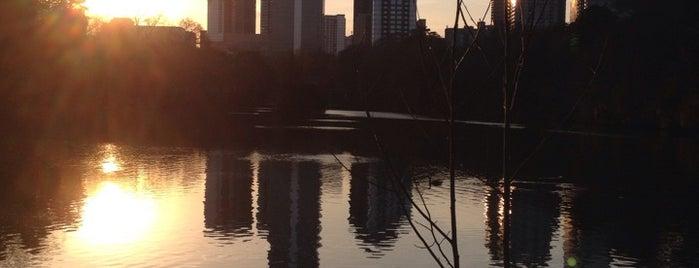 Piedmont Park is one of Spring Break in Atlanta.