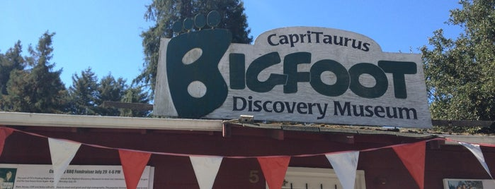 Bigfoot Discovery Museum is one of Northern CALIFORNIA: Vintage Signs.