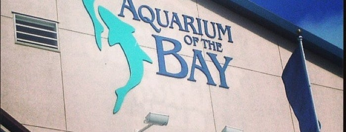 Aquarium of the Bay is one of San Francisco.