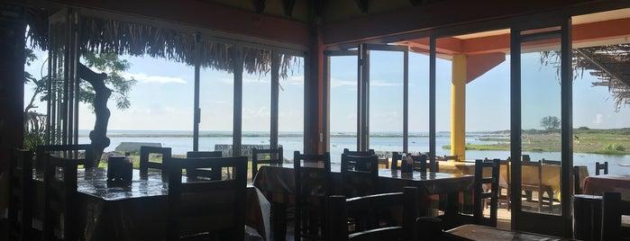 """Restaurante """"El Paraiso"""" is one of Chachalacas."""
