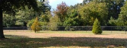 Eisenhower Park Field 8 is one of Tempat yang Disukai Steve.