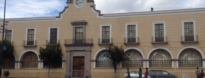 Museo De Bellas Artes Toluca is one of Tempat yang Disimpan Victoria.