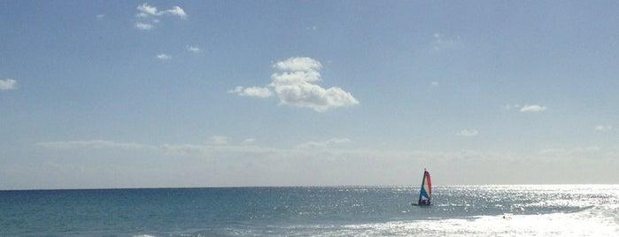 Constituyentes Beach is one of Jo : понравившиеся места.