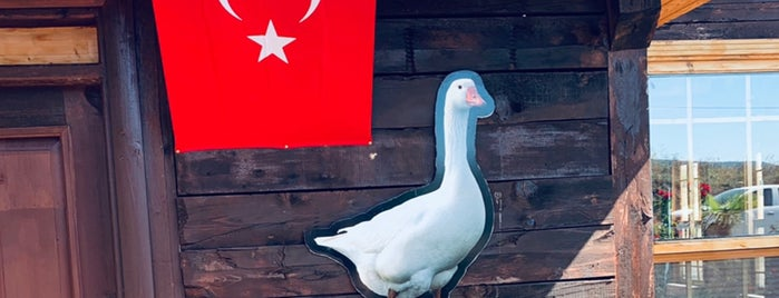 Kavak Tirit Evi is one of Tempat yang Disukai Gurkan.