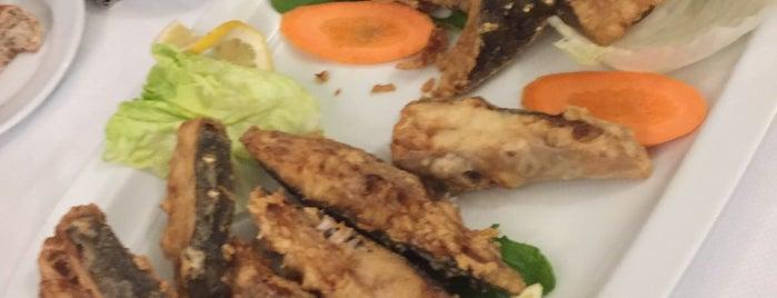 Foça Fish Gourmet is one of Locais salvos de TC Serdar.