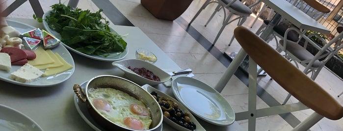 Coffee Berry Cafe is one of สถานที่ที่ TC Serdar ถูกใจ.