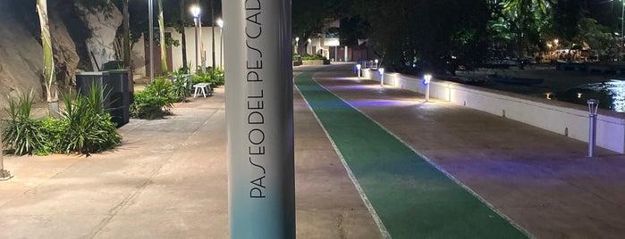 Paseo Del Pescador is one of Acapulco.