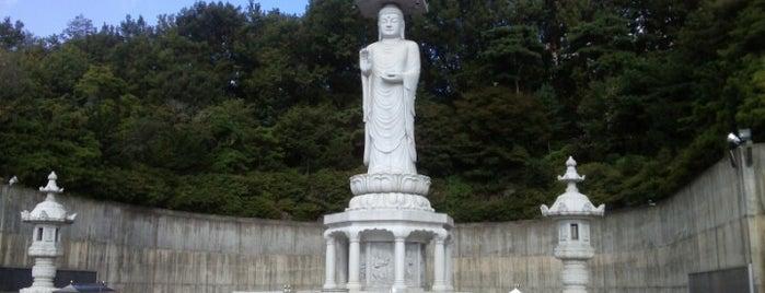 Bongeunsa Temple is one of Seoul.
