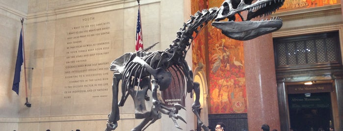 American Museum of Natural History is one of NYC TRIP.
