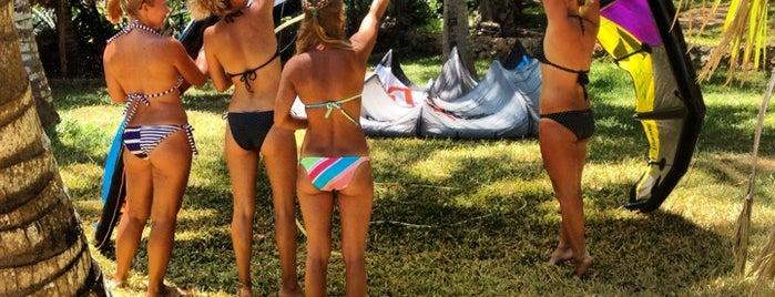 FreshWind Surf Club is one of 2013.