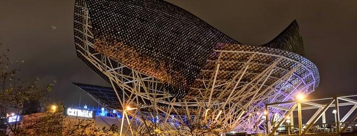 Pez y Esfera (Frank Gehry's Fish) is one of BCN Attractions.