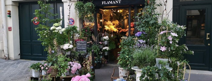 Flamant is one of Paris.