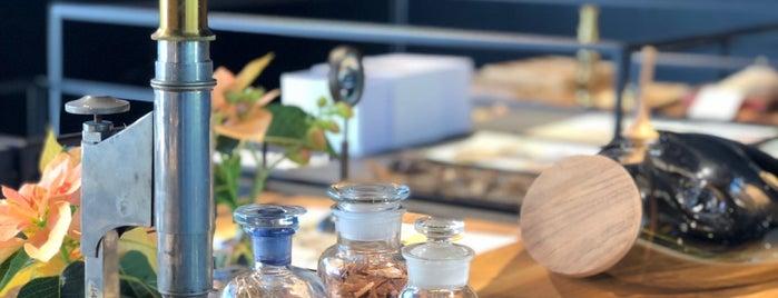 Xinú Perfumes is one of Gespeicherte Orte von Ashleigh.