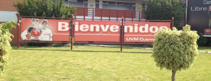 UVM Campus Cuernavaca is one of Universidades Morelos.