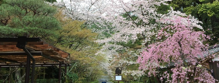 Nison-in is one of Kyoto-Japan.
